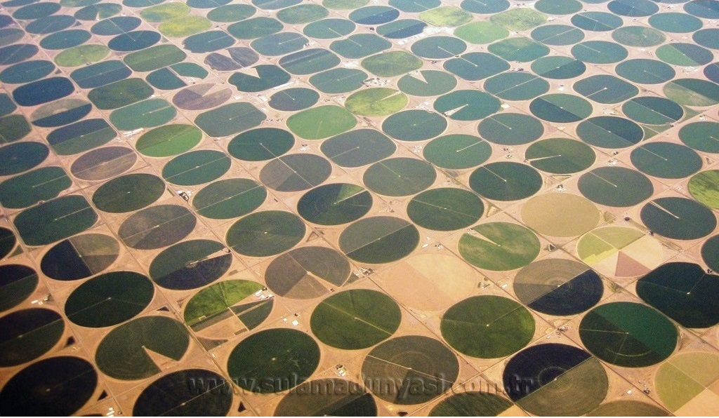 Valley-crop-circles copy